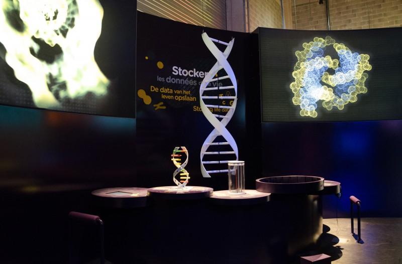 genes-et-ethique-5